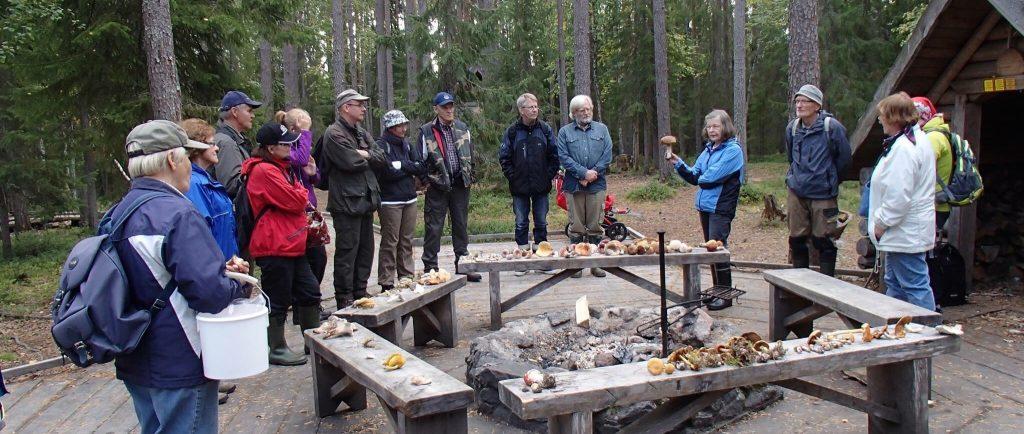 Suomen Sieniseura